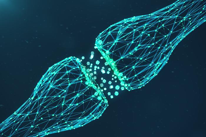 Sinapsă neuronală. Neurocoaching cu Oana Berdilă